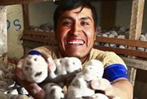 Hugo Pariona, Perú. Alimentos con poder