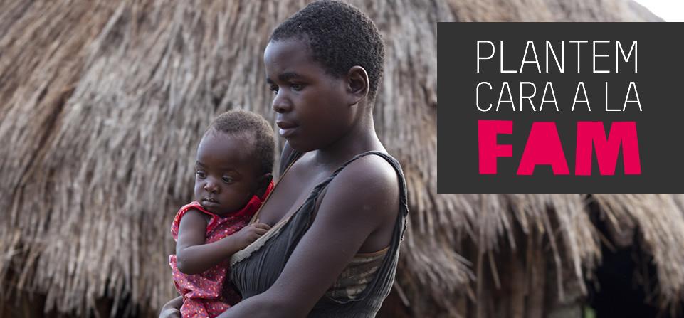 Zimbabwe: Plantem cara a la fam