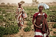 Mauritania, la pobreza innecesaria por Ángeles González-Sinde (Mayo 2014)