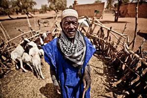 Abdullah Ali es pastor de la comunidad de Ari Hara, colabora dando en préstamo vacas a la cooperativa que lleva adelante el programa de transformación de leche. (c) Pablo Tosco / Oxfam Intermón