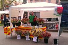Venda de roses solidàries. (c) Oxfam Intermón