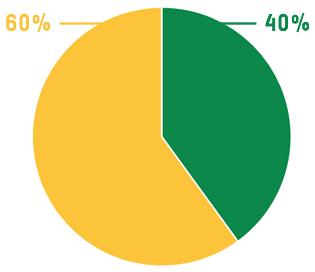 Porcentaje personas voluntarias vs personas contratadas